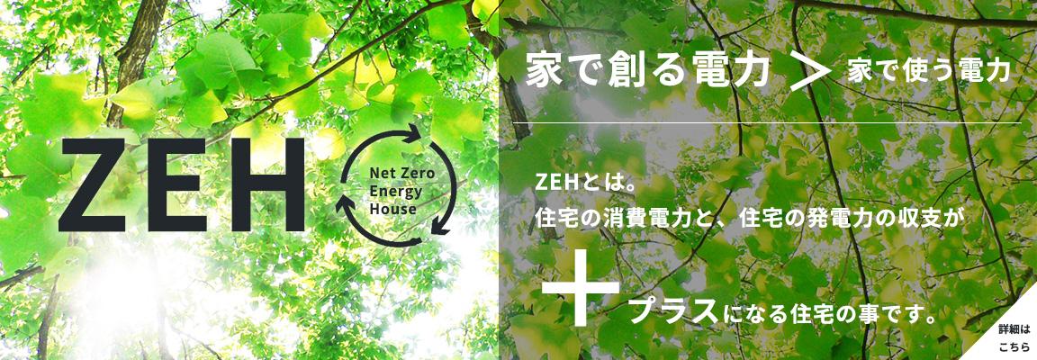 netZeroEnegryHouse